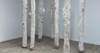 La Vidriera prepara una exposición con obras del artista Rubén  Polanco